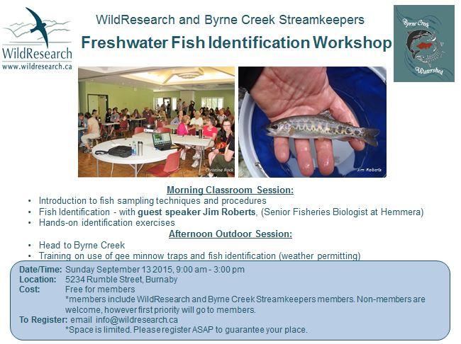 WildResearch Fish ID Workshop Ad
